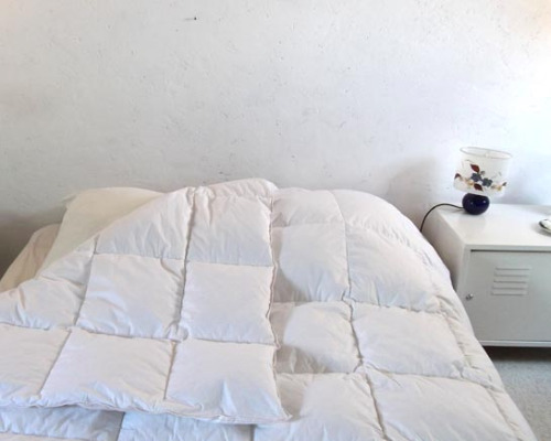 climsom couette naturelle en duvet de canard 70 30. Black Bedroom Furniture Sets. Home Design Ideas
